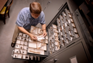 Steve Davis, associate director of Research Laboratories of Archaeology looks at some of the 8 million objects for study in the Department of Archaeology at the University of North Carolina at Chapel Hill. Most of the objects are from North Carolina from twelve thousand years ago to the 19th century. The facility also holds other collections from all parts of the world. Here Davis looks over a bone awl from the Dan River site from about 1300 AD.