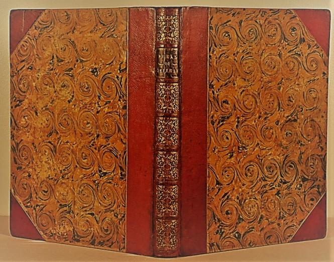 Goatskin-Reback-book-conservator-after-1
